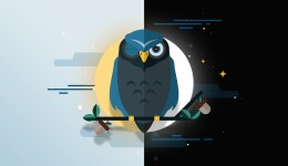 Teen Night Owls Struggle To Learn And >> I M A Night Owl Not A Morning Person Deal With It